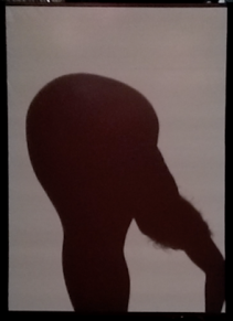 Formation, 2015; screen, light, body; dimensions variable